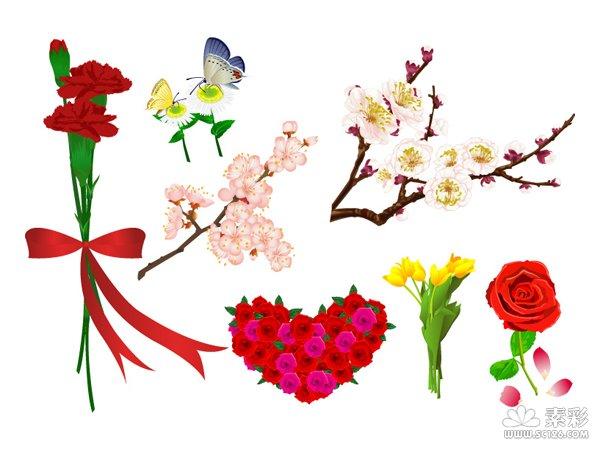 ai格式,含jpg预览图,关键字:矢量   花卉,玫瑰,康乃馨,梅花,桃花,蝴蝶
