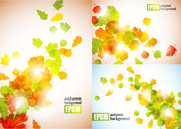 秋天飘落树叶矢量图2图片