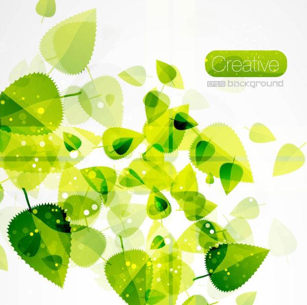 春天,绿色,树叶,叶子,叶脉,标签,矢量图,设计素材,eps格式