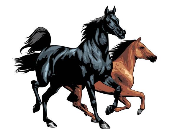 骏马,奔马,马匹,马,动物,矢量图,设计素材,eps格式