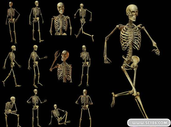 人体骨骼造型骷髅psd素材免费下载, 人体骨骼图片素材,免费骷髅psd