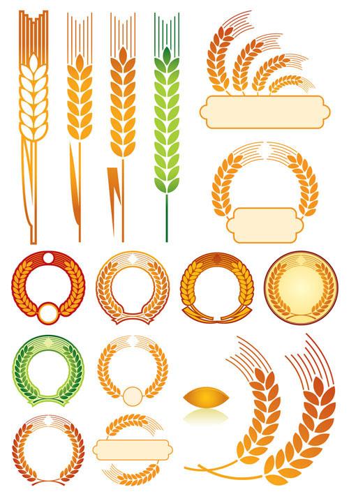 金色,麦穗,小麦,图形,图案,徽章,矢量图,设计素材,eps格式