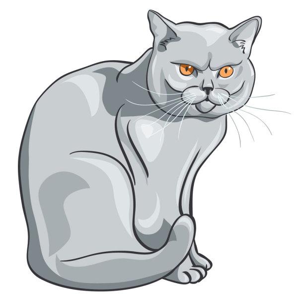 动物素材猫矢量图-矢量人物与卡通-矢量素材-素彩网