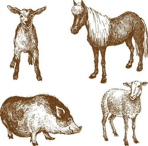 线稿,线条,动物,野猪,素描,速写,小羊,马,矢量图,设计素材,eps格式