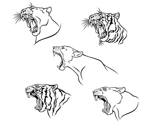 老虎,头像,矢量图,虎纹,虎头,虎纹图案,设计素材,eps格式