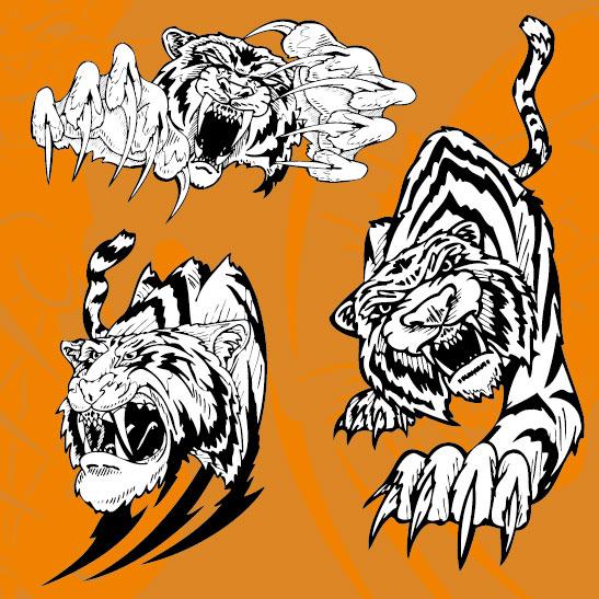 老虎图片11矢量图