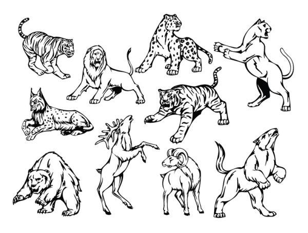 线稿,动物,手绘,图案,图形,刺青,纹身,线条,狮子,老虎,熊,羚羊,矢量