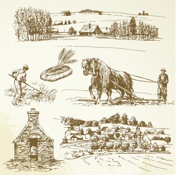 欧式,线稿,手绘,耕作,放牧,割草,牧场,面包,小麦,村庄,矢量图,设计