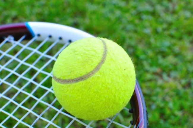 体育用品,体育用品,球拍,柔道,网球,网球拍球类深海图片