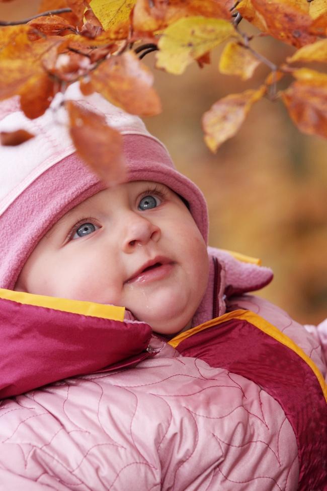 欧洲小宝宝图片