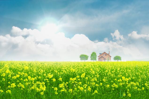 田园风景素材图片
