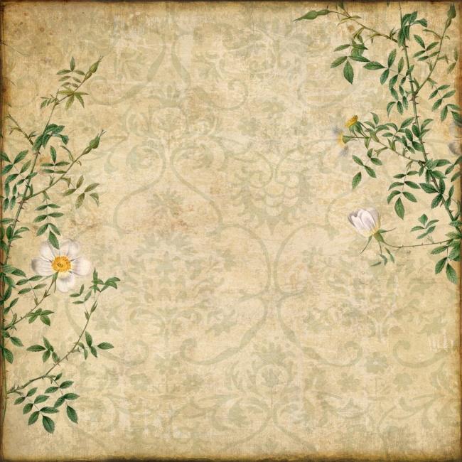 花纹素材,复古风格,花纹背景,花枝,复古风格,花纹,花卉,花枝,绿色