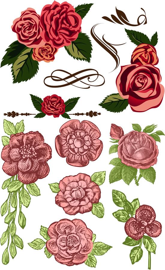 彩绘鲜花绿叶矢量图,,彩绘鲜花,绿叶,花朵,玫瑰花,手绘花卉矢量图