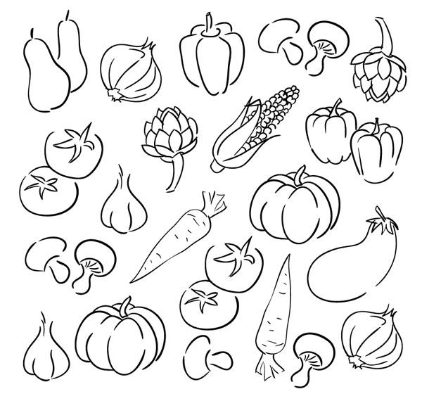 幼儿园秋季果实玉米简笔画图片大全