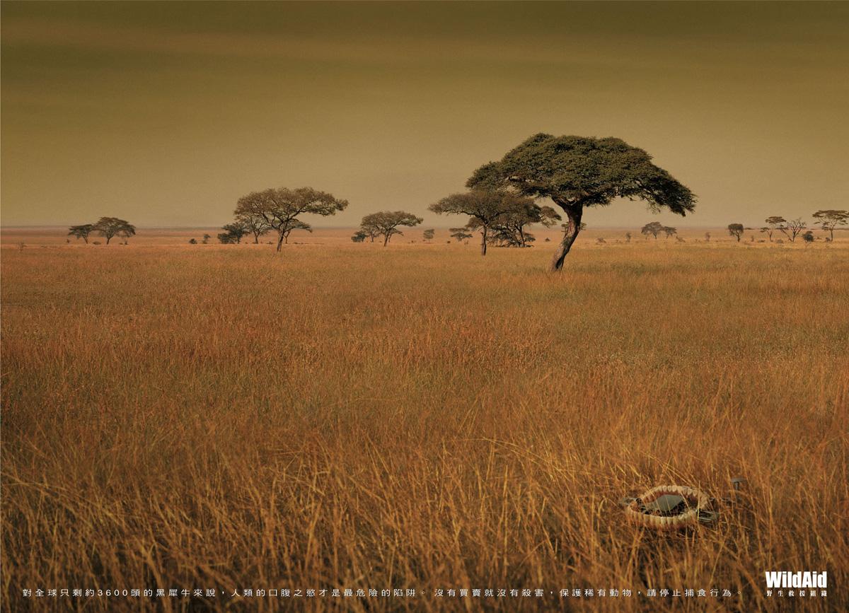 野生动物救援组织wildaid