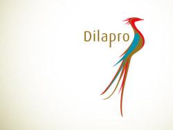 辰鸟整合_dilapro 品牌设计