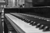 黑白琴键图片