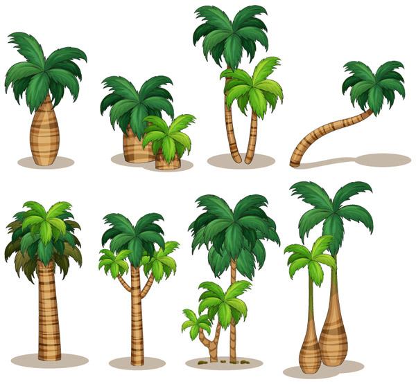 椰子树矢量图片-矢量植物与风景-矢量素材-素彩网