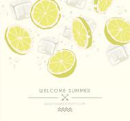 柠檬切片和冰块矢量图片