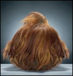 加拿大摄影师Jill Greenberg动物摄影,Monkey Portrait