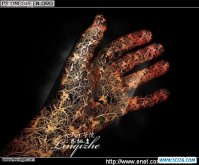 ps CS4打造神秘的镂空花纹手掌
