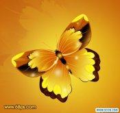 ps打造一只漂亮的枯叶蝶