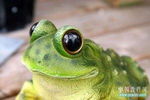 PS给青蛙换上可爱的柠檬眼