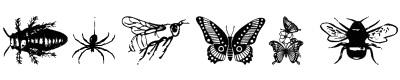 昆虫字体(wminsects1)