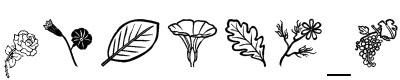 花叶字体(Nature flower show)
