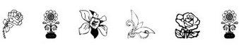 花字体(Nature floral design)