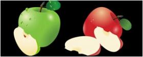 红苹果与青果矢量图
