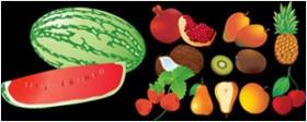 西瓜,石榴,杨桃,荔枝等矢量水果素材