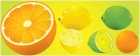 柠檬与橙子矢量水果素材