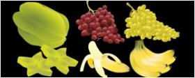 泥猴桃、香蕉、葡萄矢量图