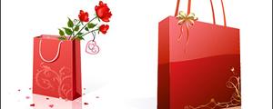 玫瑰花与花纹手提袋矢量图