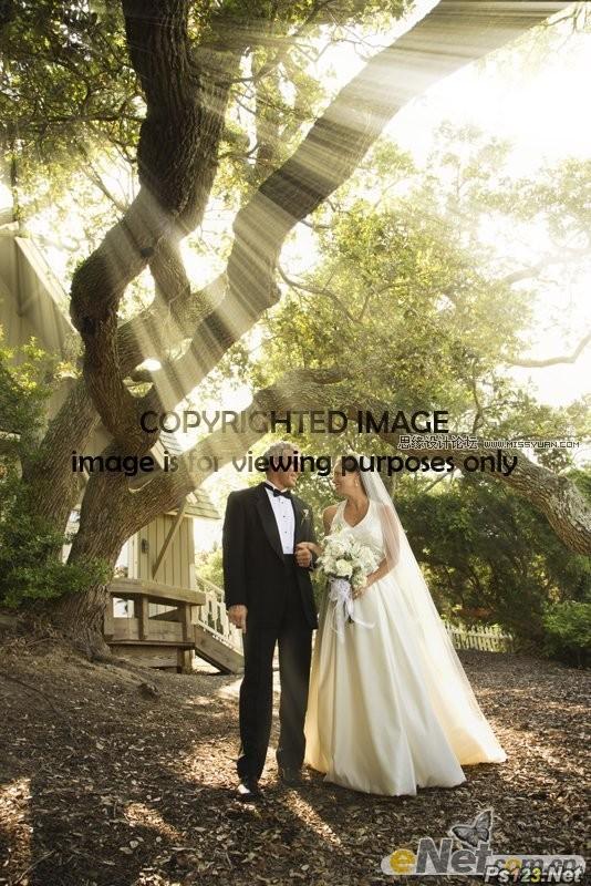 ps为照片添加穿透树林的光线特效