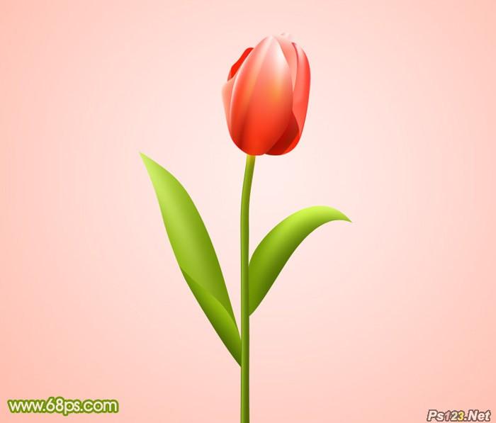 ps教你制作一朵含苞欲放的红色郁金香
