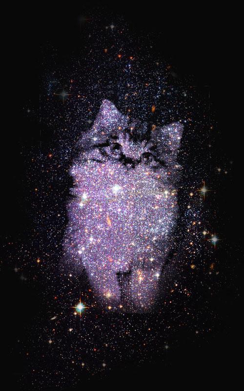 PS合成星空中的萌猫