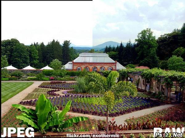 相片格式JPEG与RAW的区别和两种格式的选择