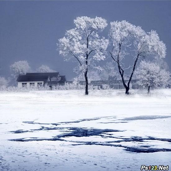 如何在冰天雪地拍出佳作的技巧