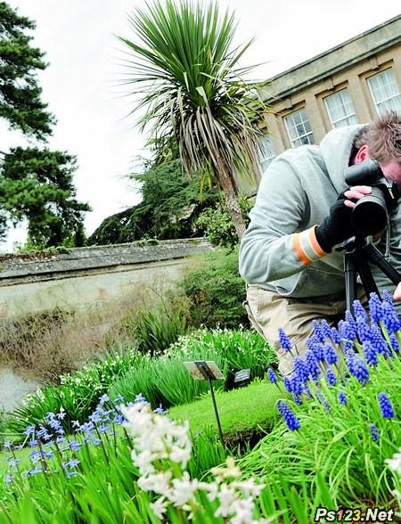 如何拍摄春季植物之美 三联教程