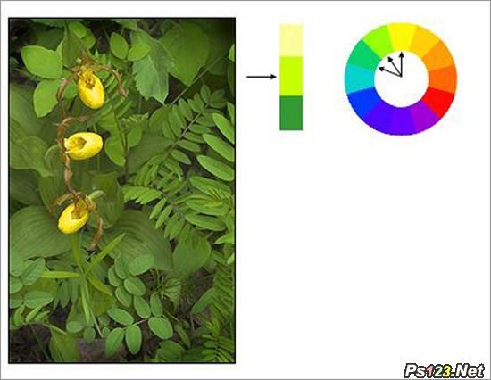 看图学色彩的基本术语