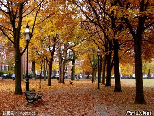 如何拍摄美丽的秋日景色 三联教程
