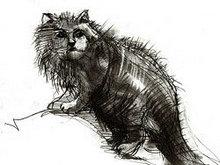 手绘线稿猫高清图片2