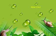 树叶水滴背景图片