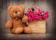 泰迪熊玩具与玫瑰花图片