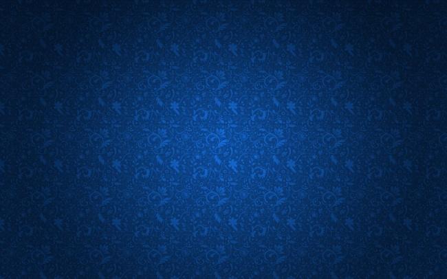 韩国人体摄影图_宝蓝色花纹图片-素彩图片大全