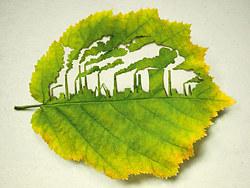 环保-绿色知道