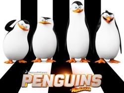 【马达加斯加企鹅penguins of madagasca】高清海报
