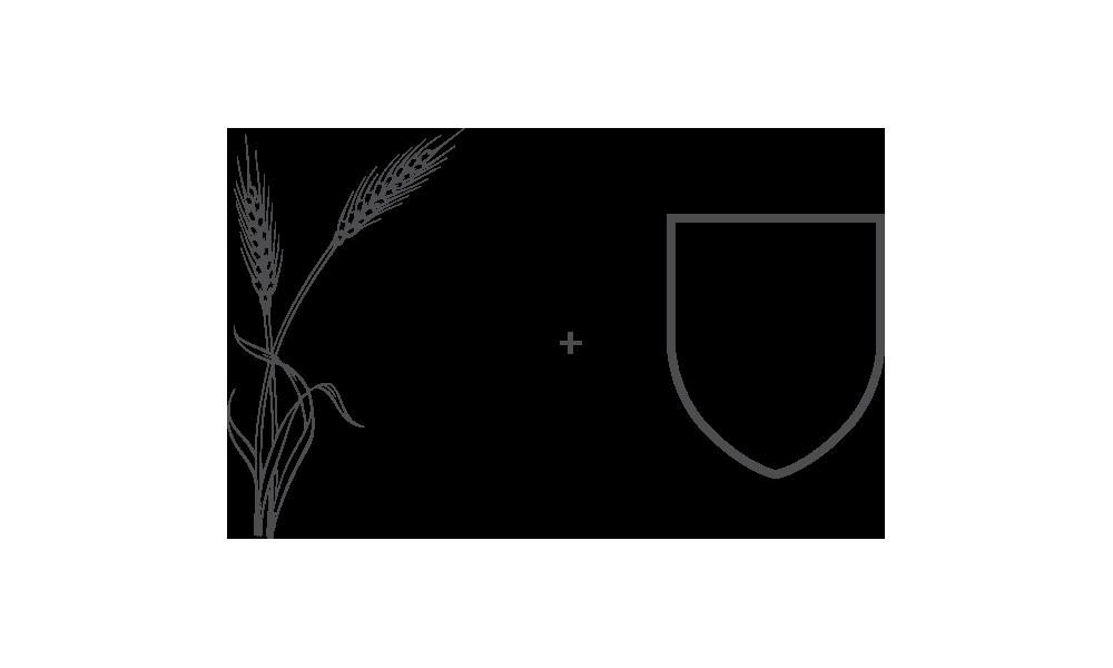 Birrak啤酒店品牌形象设计
